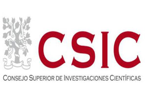 csic300